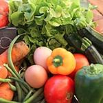 repas bio légumes