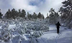 ski cévennes