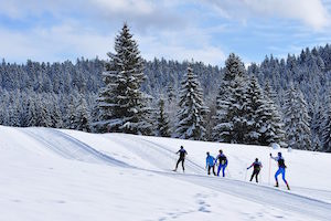 Ski de fond parc naturel jura