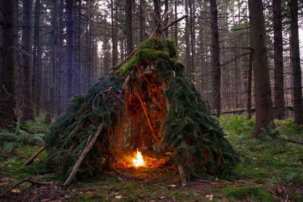 Cabane de type hutte