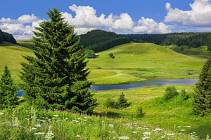 Parc naturel Haut-Jura