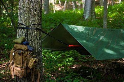 Types de cabane en forêt